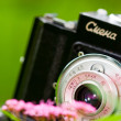 Stock Photo: Classical SLR camerand flower