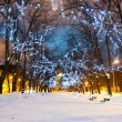 Illuminated snowy avenue at night — Stock Photo