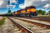 Long train de marchandises — Photo