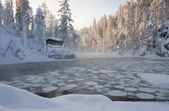 Hut near pond in winter forest — Stock Photo