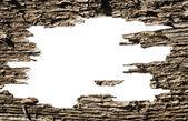 Fundo de pintura esfola — Foto Stock