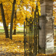 Old gate in autumn forest — Stock Photo
