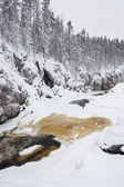 River flowing in snowy winter forest — Stock Photo