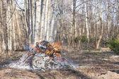 Sigara şenlik ateşinde orman — Stok fotoğraf
