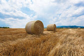Straw bales in a field — Stock Photo