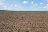 Plowed field — Fotografia Stock