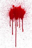 Gouttes de sang — Photo