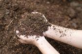 Půda v náručí farmář — Stock fotografie