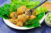 Springrolls traditional — Stock Photo