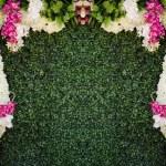 Flowers frame for design art work — Stock Photo #24641369