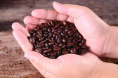 Still life Arabica coffee beans — Stock Photo