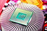 Computer cpu (central processor unit) chip — Stock Photo