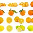 Set of citrus fruit isolated on white background — Stock Photo