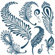Decorative feathers set — Stock Vector