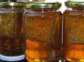 Honey comb in a jar! — Photo