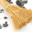Stock Photo: Broom of the Epiphany
