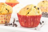 Muffin with ricotta and chocolate — Stock Photo