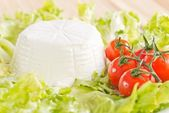 Ricotta di bufala — Stock Photo