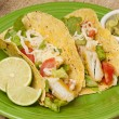 Homemade fresh fish tacos — Stock Photo #14839475