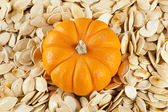 Baked and Salted Pumpkin Seeds — 图库照片