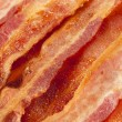 Stock Photo: Cooked Greasy Bacon