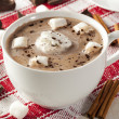 Gourmet Hot Chocolate — Stock Photo