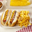 Organic All Beef Hotdog — Stock Photo #19968327