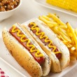 Organic All Beef Hotdog — Stock Photo #19968347