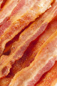 Cooked Greasy Bacon — Stock Photo