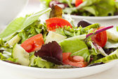 Fresh Green Organic Garden Salad — Stock Photo