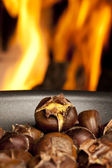 Organic Brown Chestnuts Roasting — Stock Photo