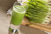 Green Organic Wheat Grass Shot — Stock Photo