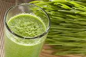 Green Organic Wheat Grass Shot — Stock Photo