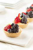 Fresh Homemade Fruit Tart — Stock Photo
