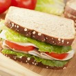 Fresh Homemade Turkey Sandwich — Stock Photo