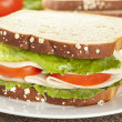 Fresh Homemade Turkey Sandwich — Stock Photo #20058253