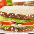Fresh Homemade Turkey Sandwich — Stock Photo #20058257