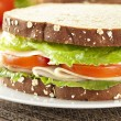 Fresh Homemade Turkey Sandwich — Stock Photo #20058261