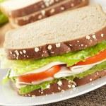 Fresh Homemade Turkey Sandwich — Stock Photo #20058263