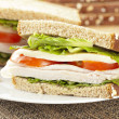 Fresh Homemade Turkey Sandwich — Stock Photo #20058305