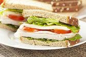 Fresh Homemade Turkey Sandwich — Stock Photo