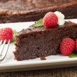 Homemade Chocolate Cake — Stock Photo #20105739