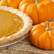 Fresh Homemade Pumpkin Pie — Stock Photo #20174333
