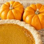 Fresh Homemade Pumpkin Pie — Stock Photo #20174369
