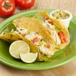 Homemade fresh fish tacos — Stock Photo #20174961