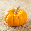 Fresh Orange Organic Pumpkin — Stock Photo #20176049