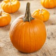 Fresh Orange Organic Pumpkin — Stock Photo #20176261