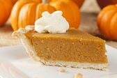 Fresh Homemade Pumpkin Pie — Foto de Stock