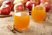 Fresh Organic Apple Cider — Stock Photo