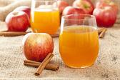 Fresh Organic Apple Cider — Stock Photo